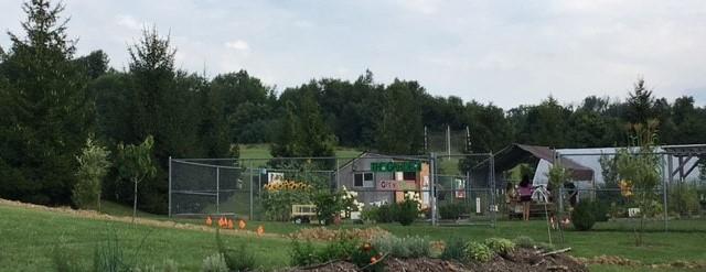 School Garden at GHS